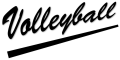 Logo Volleyball png